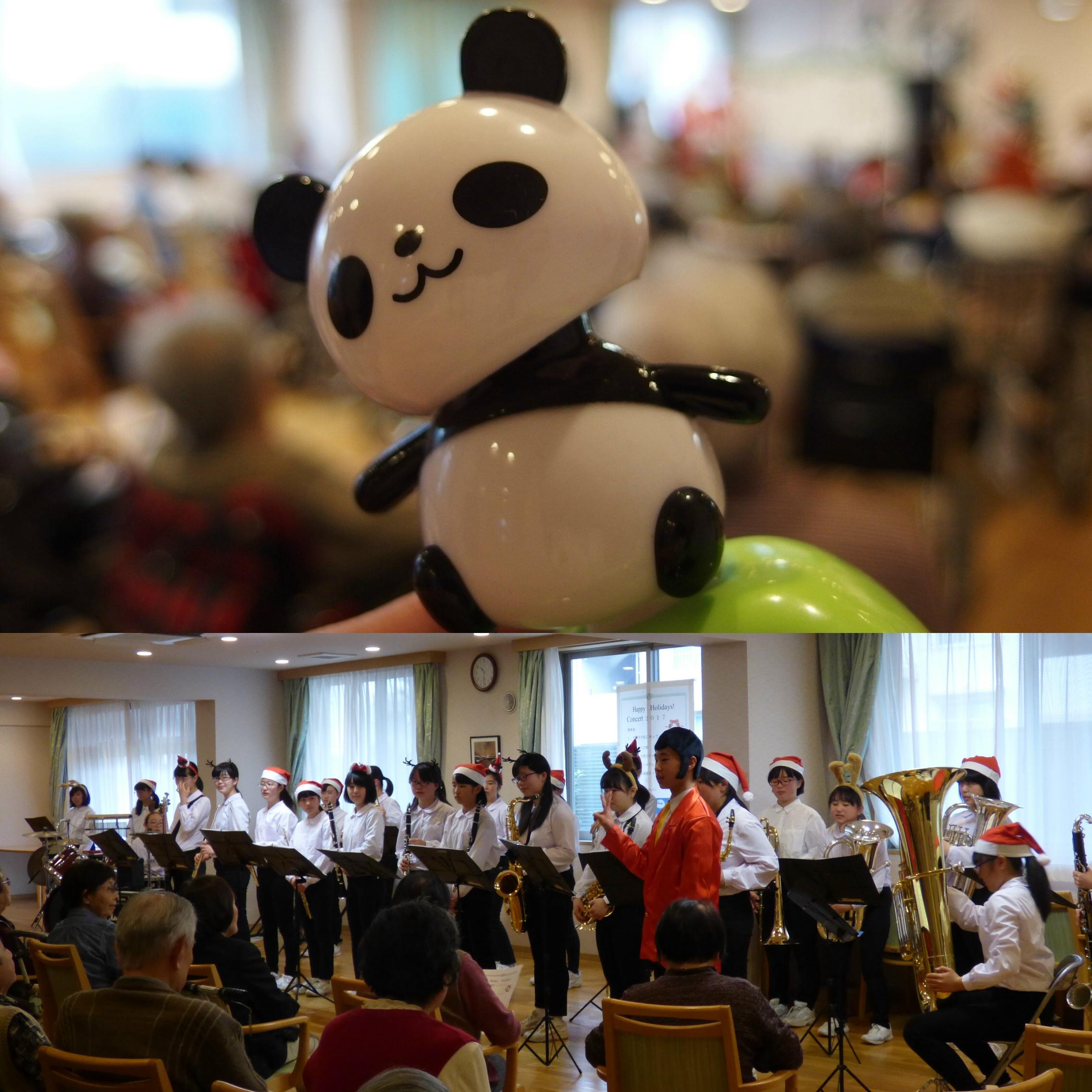 大人気のパンダのプレゼント